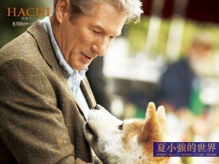 夏小強:忠犬八公的故事——忠誠和愛的感動