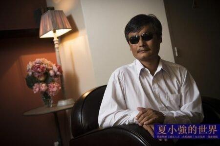 夏小強:陳光誠成功走脫 周永康出局在即