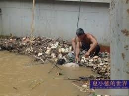 夏小強:船員慘死,誰來保護中國人?