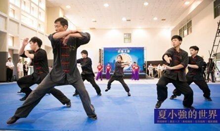 徐曉東還要假打多少回?傳統武術能不能打?