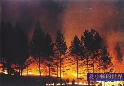 前首席記者真實還原那場大興安嶺火災