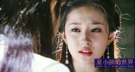 奇文共賞:我娶劉亦菲的可行性報告