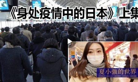 林萍 日本