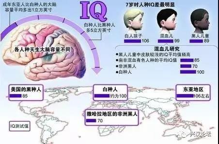 中非通婚陰謀滅漢族,腦力退化80萬年