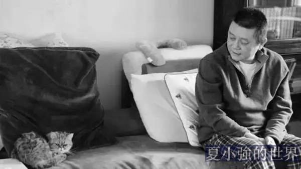 「痞子文學」鼻祖王朔:61歲的單身漢住徐靜蕾別墅,與兩隻貓為伴