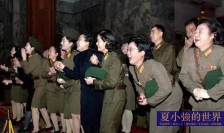 大人物 朝鮮