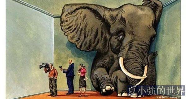 在苟晶事件裡,這才是房間裡的大象啊!
