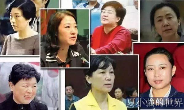 禁不住誘惑,甘於被圍獵:70後美女市長許愛蓮和中國十大好色女貪官