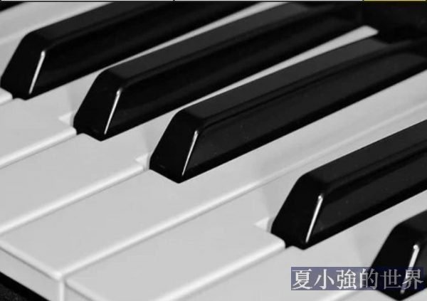 鋼琴只能排最後?中產孩子興趣班鄙視鏈