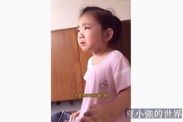 低年級開學圖鑒(視頻)