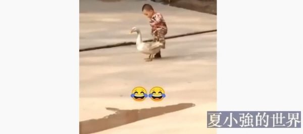 孩子們的小快樂(視頻)