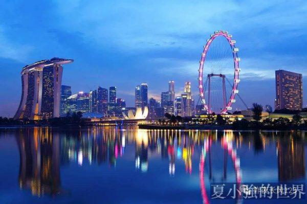 新加坡模式蠢在哪?
