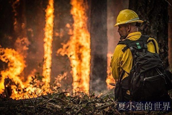 名家專欄:糟糕的政策助燃了美國森林大火