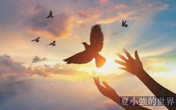 【明子專欄】自由之歌
