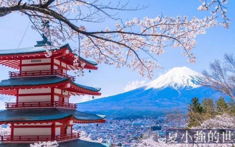日本沒有政治正確,日本人為何支持川普?
