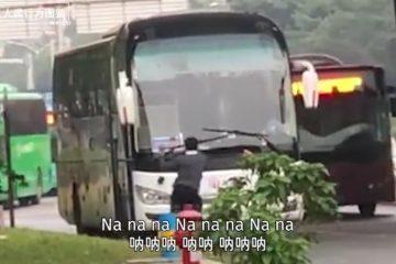 公路迷惑行為圖鑒(視頻)