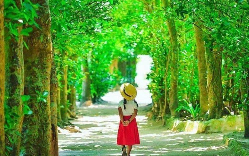 日本爸爸把女兒拍成宮崎駿動畫,治癒無數人,每天上萬人催他晒娃!