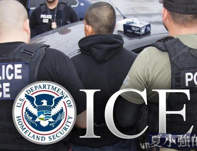 左派都應該看看的,非法移民的殘酷真相
