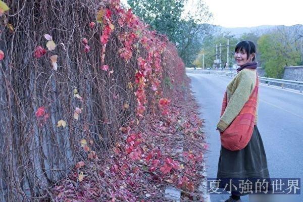 北京畫家等11人被非法起訴 律師譴責中共