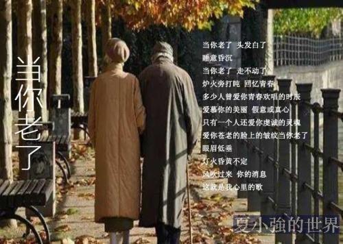 有人把《當你老了》翻譯成古詩詞,真是太美了!