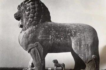 看歷代石獅子的造型變化