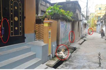 為什麼印度人家門口都要掛幾個塑料瓶子?
