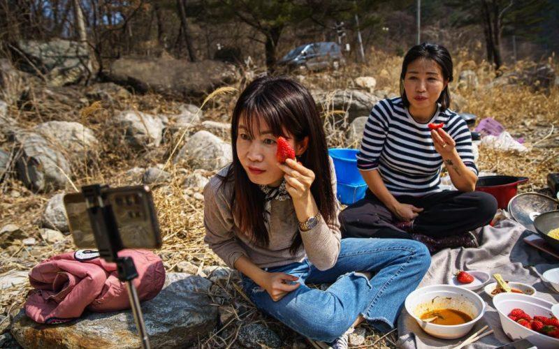 誰是最有名的朝鮮網紅?