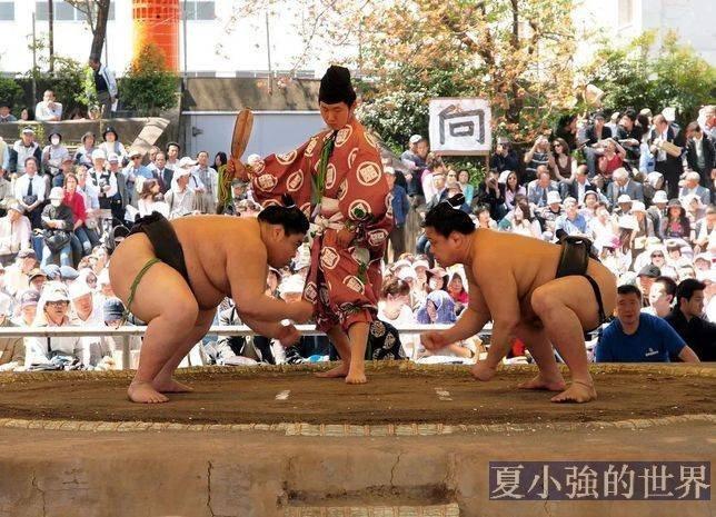 相撲力士的兜襠布里穿內褲嗎?