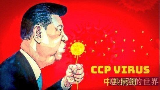 中共國實驗室裡還有更可怕的東西