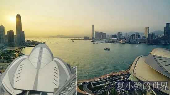 中共在香港布風水邪局 毒蛇逃不出佛掌心