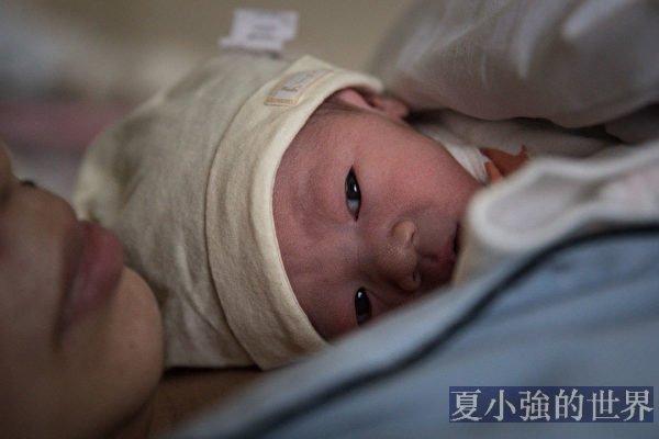 楊威:中共政治局會議決定生幾孩?