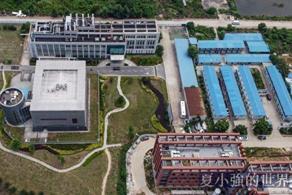 名家專欄:武漢實驗室病毒洩露調查 11問
