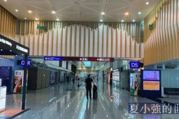 台灣疫情見聞——從桃園機場飛上海