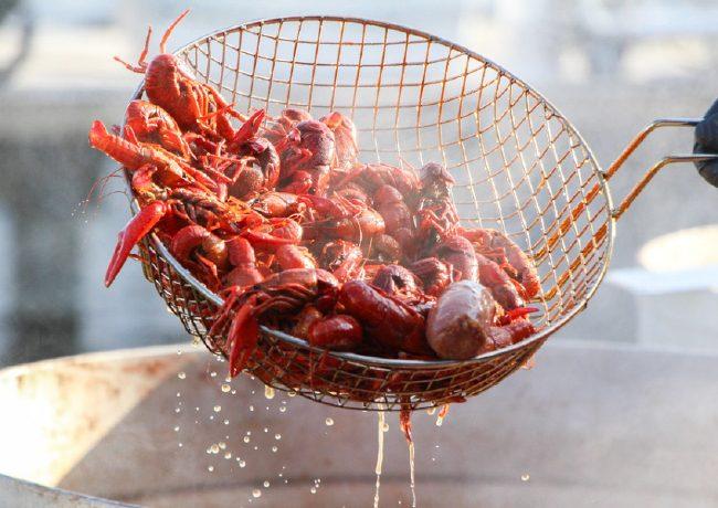 燒蝦師年薪 20 萬起、龍蝦飯成本價不超過 2 元,可我們為什麼還是吃不起小龍蝦?