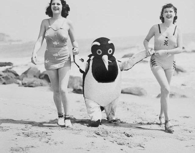 50張神奇照片:60年前美女們的古怪行為!