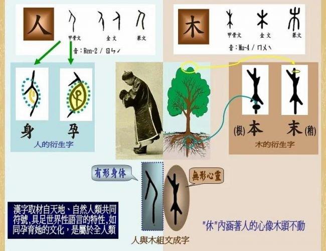 漢字是一個生命體