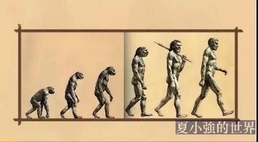 最新版历史教材,終於刪掉了誤導了數十年的「人類進化示意圖」